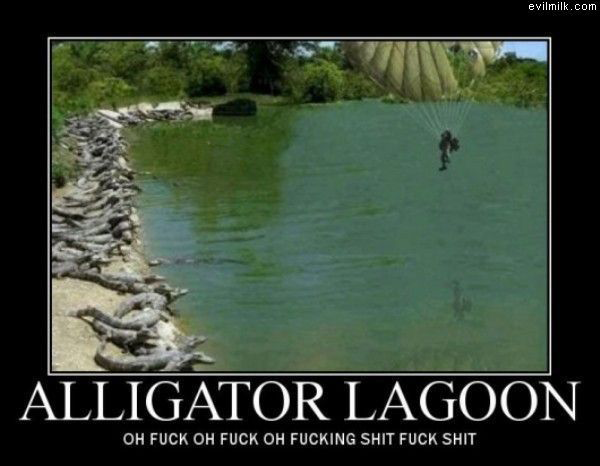Alligator Lagoon. Water looks great, you go first.. evilmilk. ccam Nil FUCK OH FUCK OH FUCKING SHIT FUCK SHIT. why the is he taking a picture and not helping the por bastard