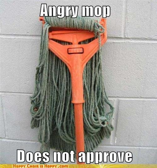 angry mop. .