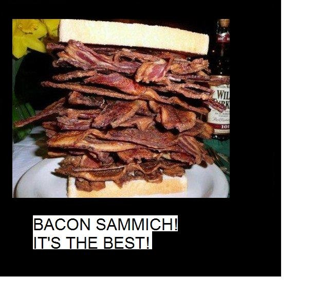 Bacon Sammich!. So delicious...Go Team Bacon!. BACON SAMMICHE IT' S THE BEST!. GO TEAM BACON im tempted to make one right now XXD