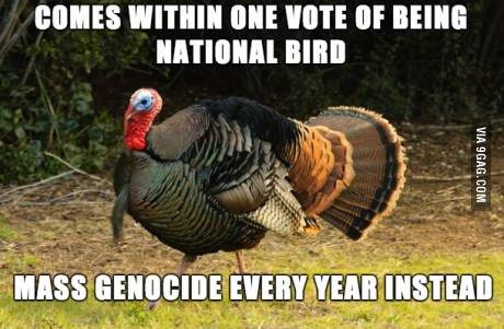 "Bad Luck Turkey. . RIMES III! WINE "" BEING BIRD. imagine polandball with 'murrica riding turkey instead of bald eagle"