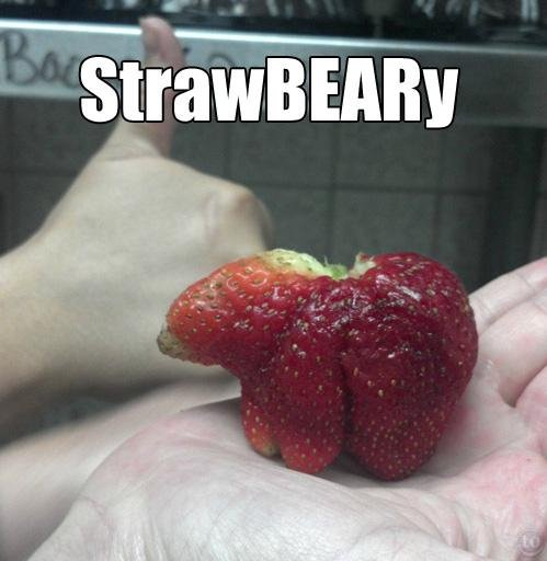 Bad pun of the day. . h Straw ERIN