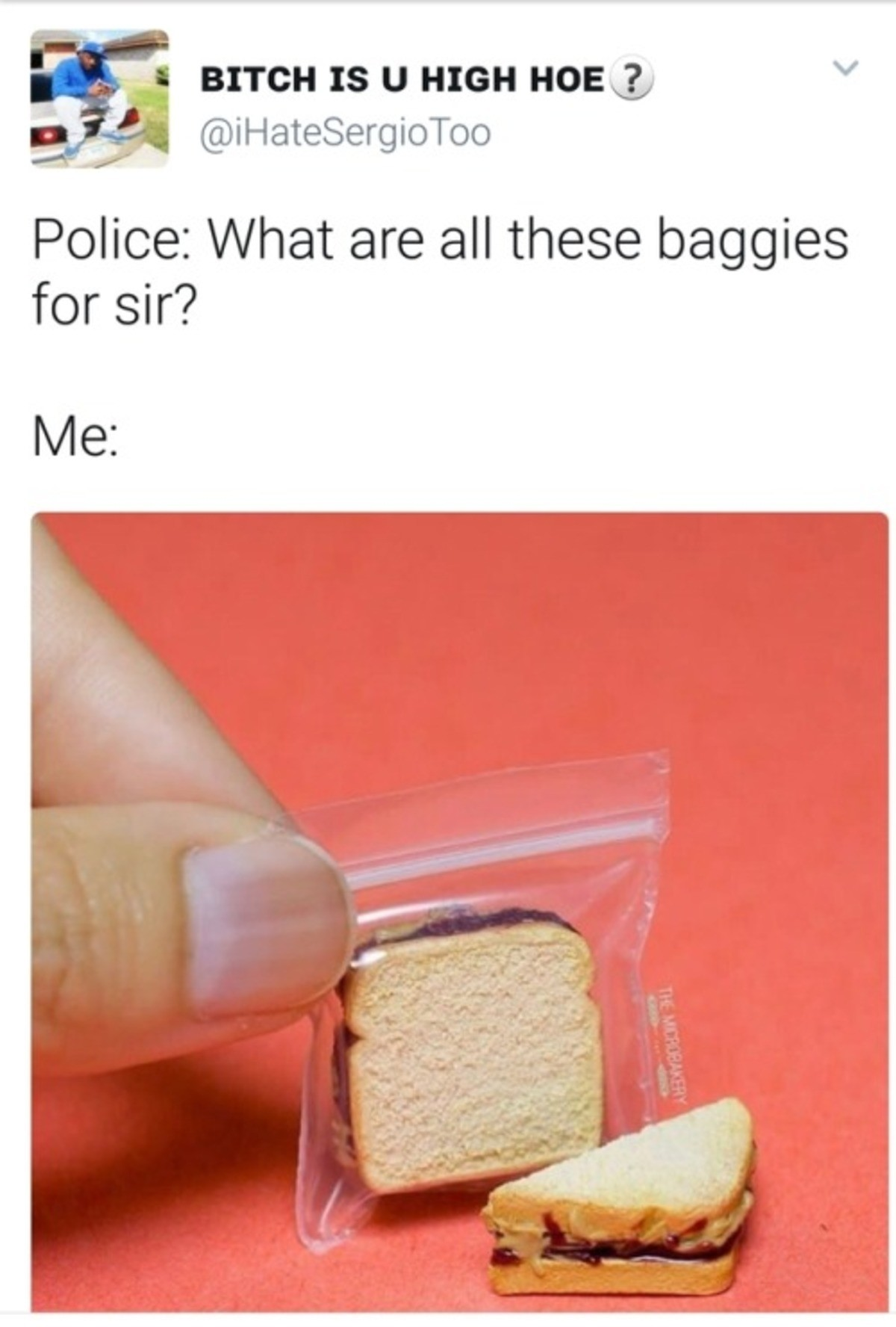 Baggies. . I BITCH 18 U HIGH Police: What are all these baggies for sir?