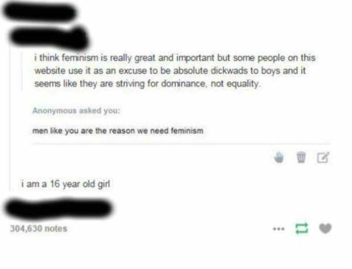 Based 16 yo girl. . i think feminism is wally great and important but some people on this seems like they are striving for dominance, not equality asked yea: 30