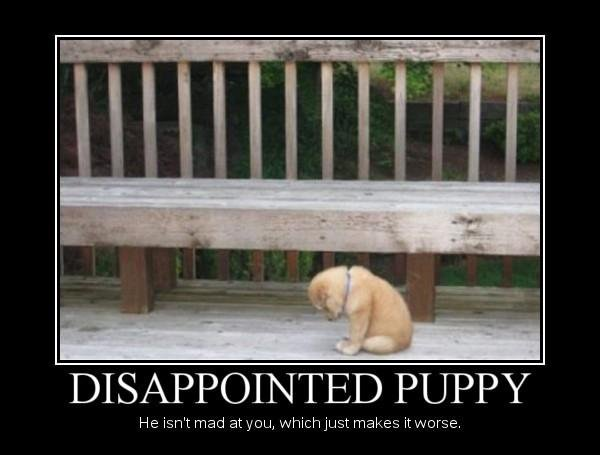 baww. . DISAPPOINTED PUPPY e isn' t mad , chichiest makes indorse.