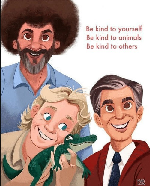 Be Kind. .. READ A DAMN BOOK!