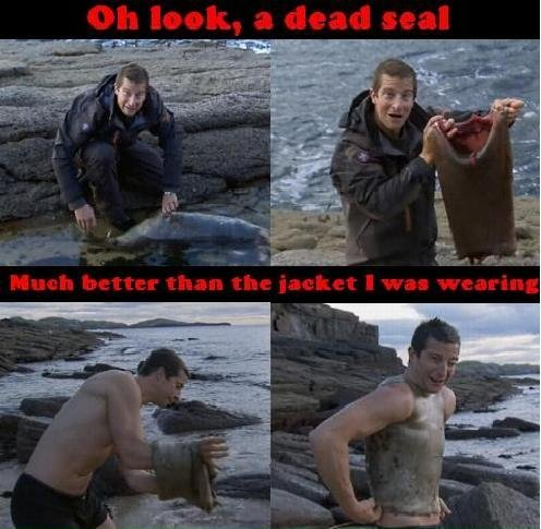 Bear grylls makes so much sense. Im more of a less stroud fan, his lessons make more sense than bear grylls' lessons .. he is good for a good laugh tho.. Oh.... I thought this was funny. . . v_v UNTIL I FIGURED OUT IT WAS A REPOST D: