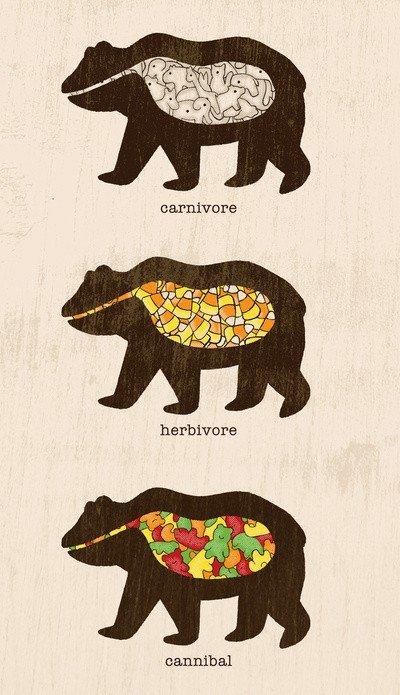 Bear tummies. Not mine. orgininal. wat