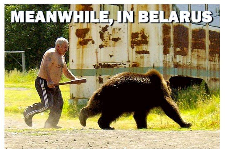 bear getting batted. .. GUYS GOT SOME BALLLLLLZ