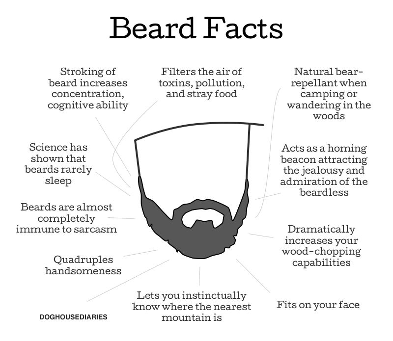 Beard facts. I'm a beard, and I can confirm this.. Beard Facts Filters the air of toxins, pollution, and stray food Stroking of beard increases concentration, c