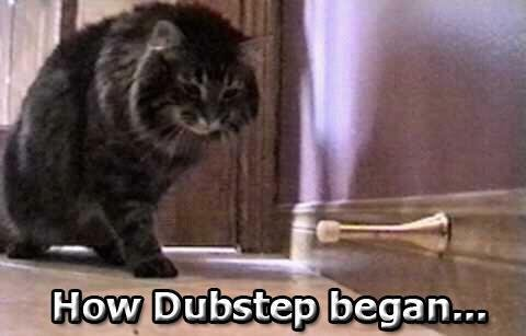 Begging of Dubstep. lolz.. does it move??