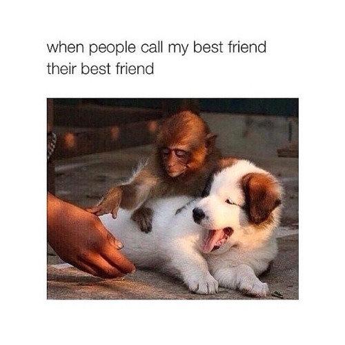 Best friend. . when peeple call my beet friend their best friend. I wish I had a best friend.