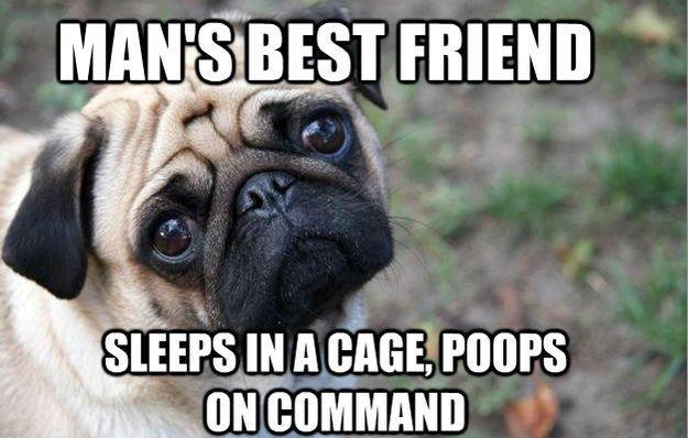 best friend. .. Sounds like OP
