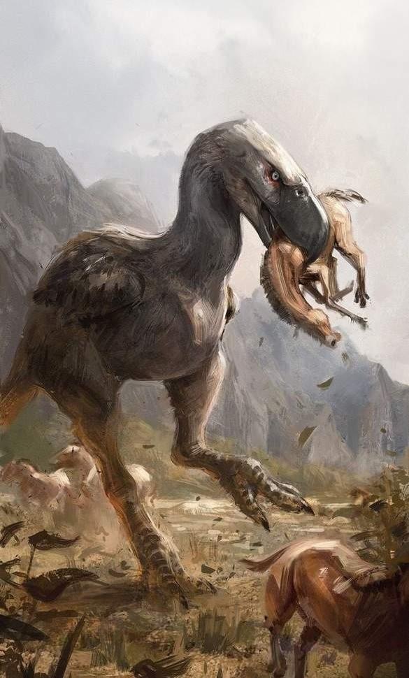 big birb. Name: Brontornis (Thunder bird). Phonetic: Bron-tor-niss. Named By: Francisco P. Moreno & Alcides Mercerat - 1891. Synonyms: Brontorni