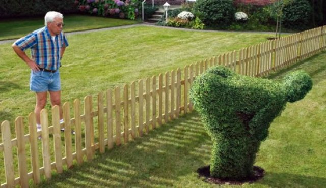 big booty shrubberies. XXX.. Into the bush he goes
