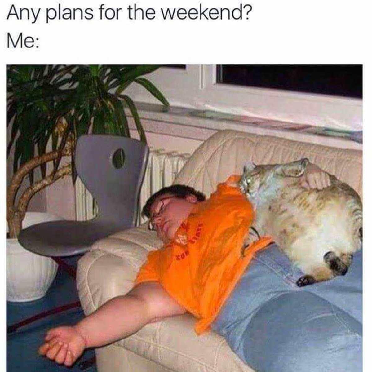 Big Plans. .. I love summer naps.