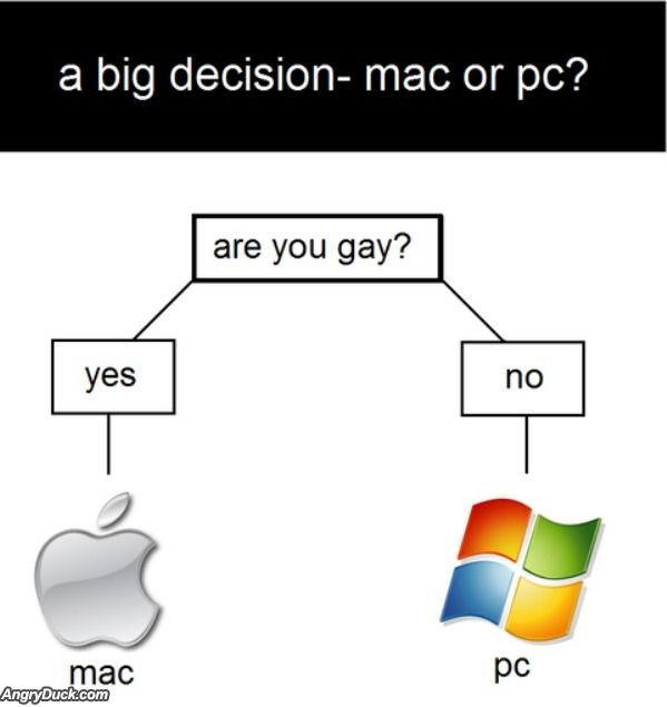 Big decision. .. You know, this really works, before my stepbrother found out he was gay he had a Hp computer, now he has a Mac book air or some gay like that. Freaky