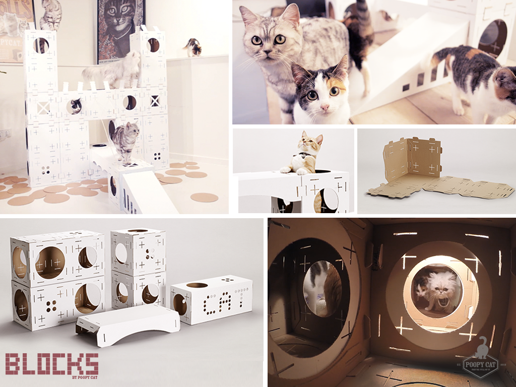 BLOCKS a new awesome toy for your cat. Poopy Cat has just launched a new project called BLOCKS. This is a new type of toy for you and your cat. BLOCKS lets you