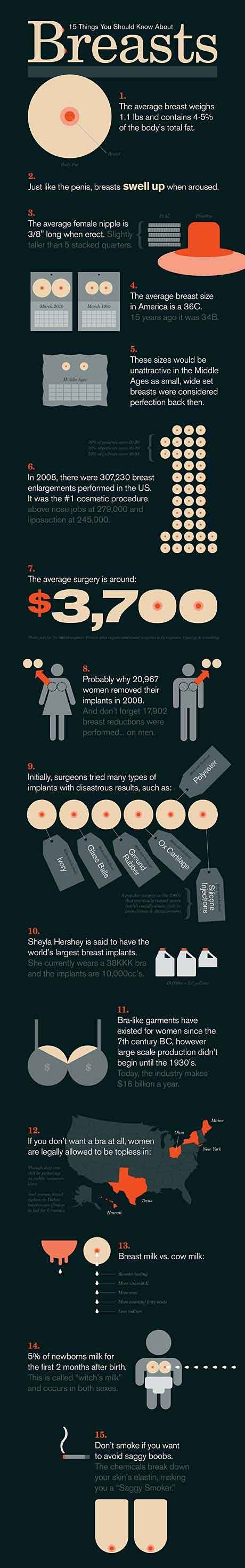 Boob Facts. not sure is or not..... f! 15 Things You Knaw About I The average breast weighs 1. 1 lbs and contains % st the body' s mat fat Just like the penis,