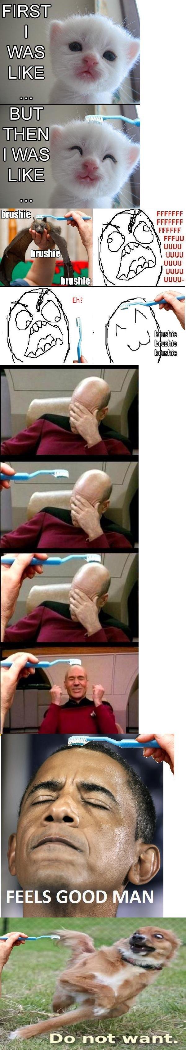 brushe brush. .. :3