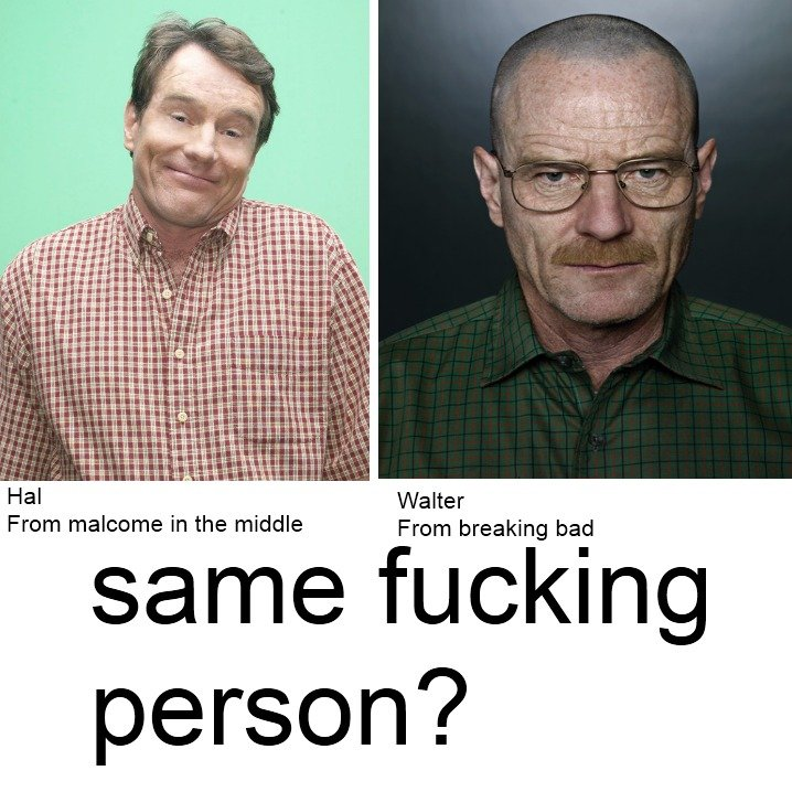 Bryan Cranston. Just found this out... i might just be a slowpoke. Walter From breaking bad From malcome in the middle
