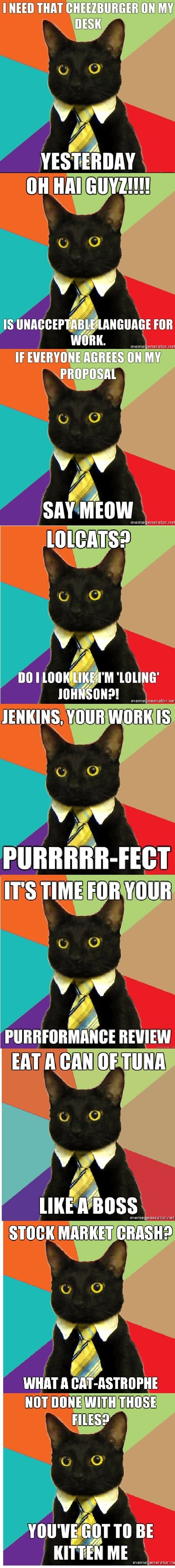 """Business Cat Comp. I'll post more, regardless of thumbs<br /> Edit: FRONT PAGE! HOLY ! THANK YOU VERY MUCH!!!!. Milan ' JENKINS"""". You WIN"""" stung: MARKET l"""