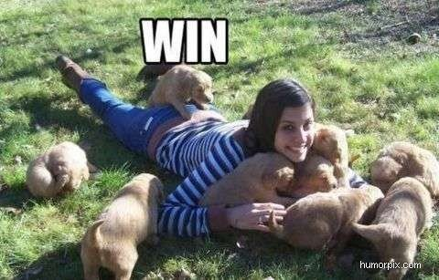 Buttsex!. . pam. SO MANY PUPPIES!!!!