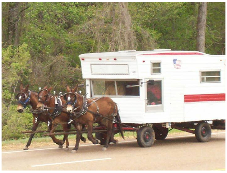 Camping Amish Style. .