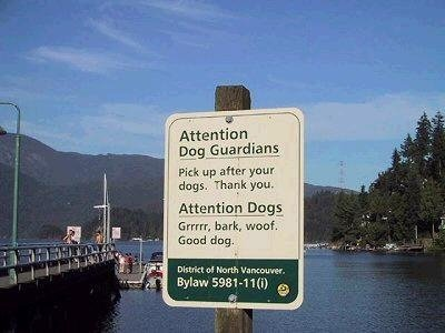 Dogs need rules too.. .