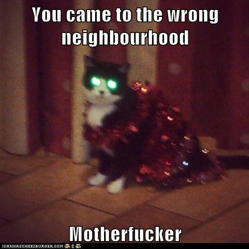 Evil. .. Hey there kitty... You wanna assume direct control?