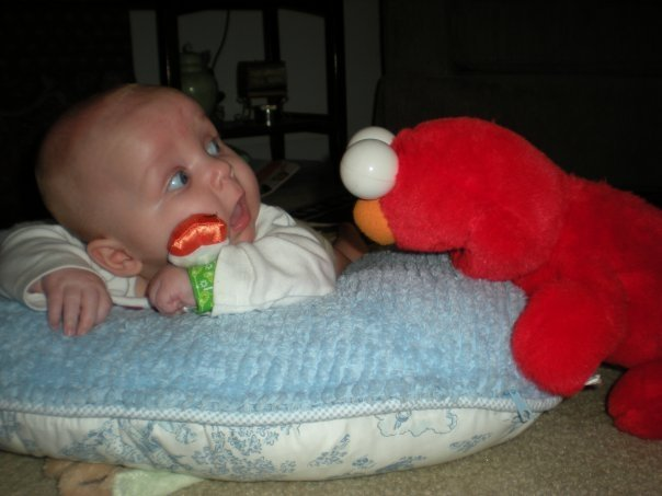 """freak me the out elmo. source: <a href="""" target=_blank>www.collegehumor.com/picture:1929503</a>.. Elmo will finish with your pillow in a minute"""