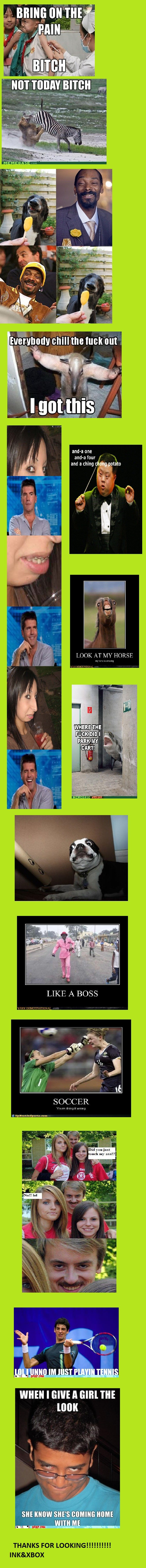FUNNY PICTURES!. Just a few of my fav funny pictures!. andia four and a ching WHEN I GIVE ll (SIM m THANKS FOR INK& XBOX