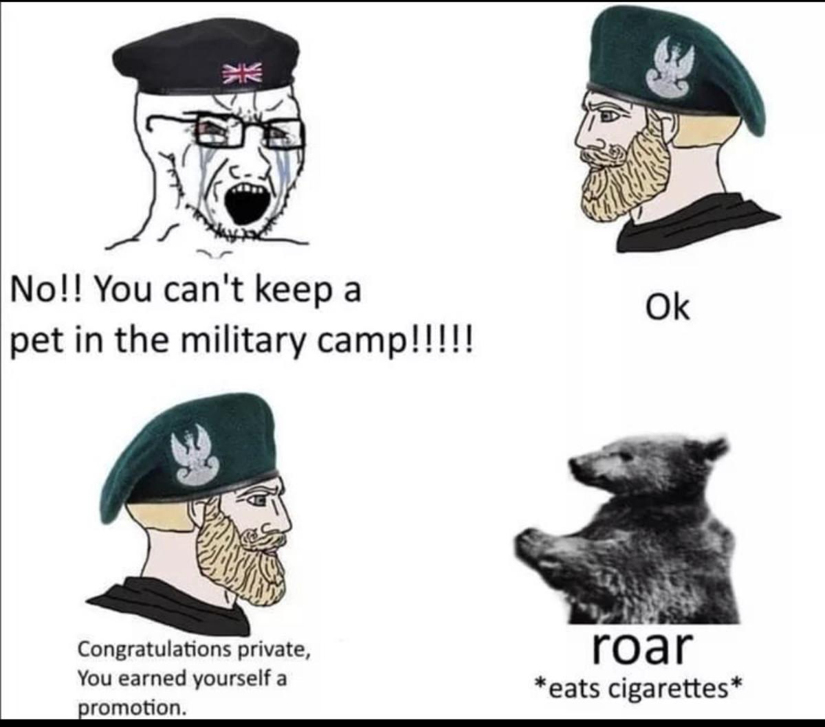hopeless Dotterel. .. He was eventually promoted up to Corporal. https://en.wikipedia.org/wiki/Wojtek_(bear)
