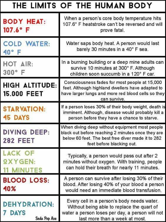 """Human limitations.. . THE LIMITS OF THE HUMAN BODY When a persin!» core body temperature hits BODY HEAT: , 6"""" F heatstroke cant be reversed and will IDLE' F pro"""