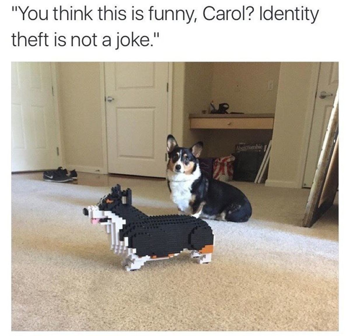 """Identity Theft. . You think i' iller theft is not 'jill. joke."""". I don't know why, but insults + suburban mom name always crack me up"""