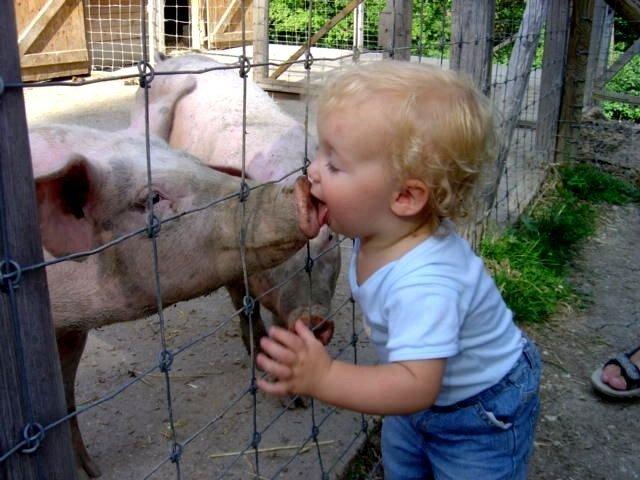 Kiss. Ew?.