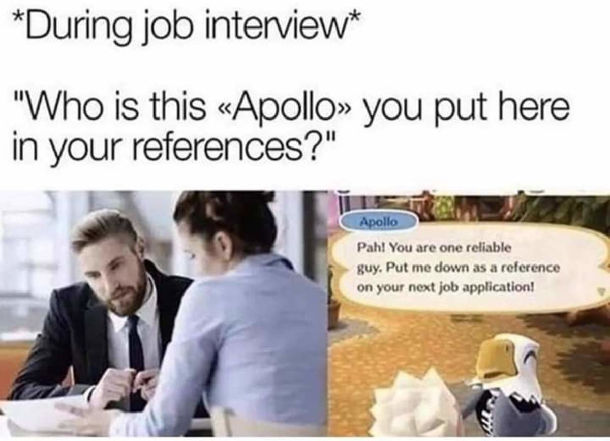 learned Rook. .. I hope everyone who applies at Nintendo use Apollo as a reference. It's like the only place that would accept it.