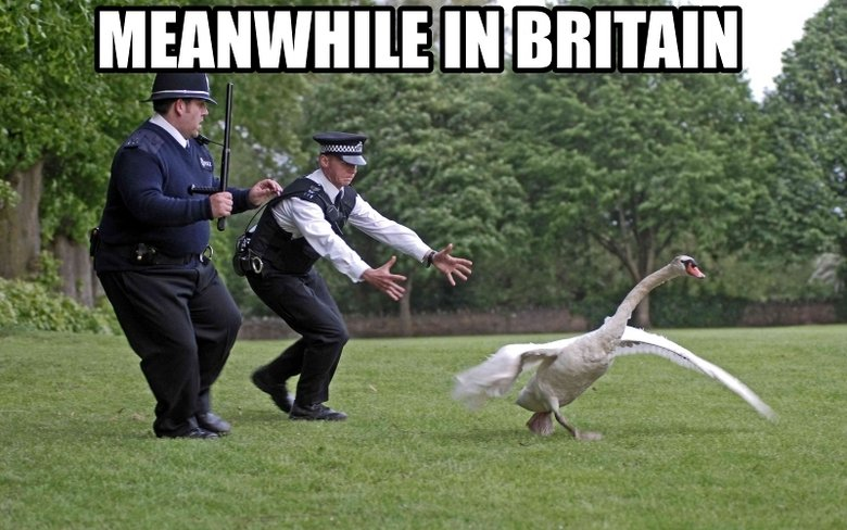"""Meanwhile In Britain. .. That's from """"Hot Fuzz"""" one of my favorite movies!"""