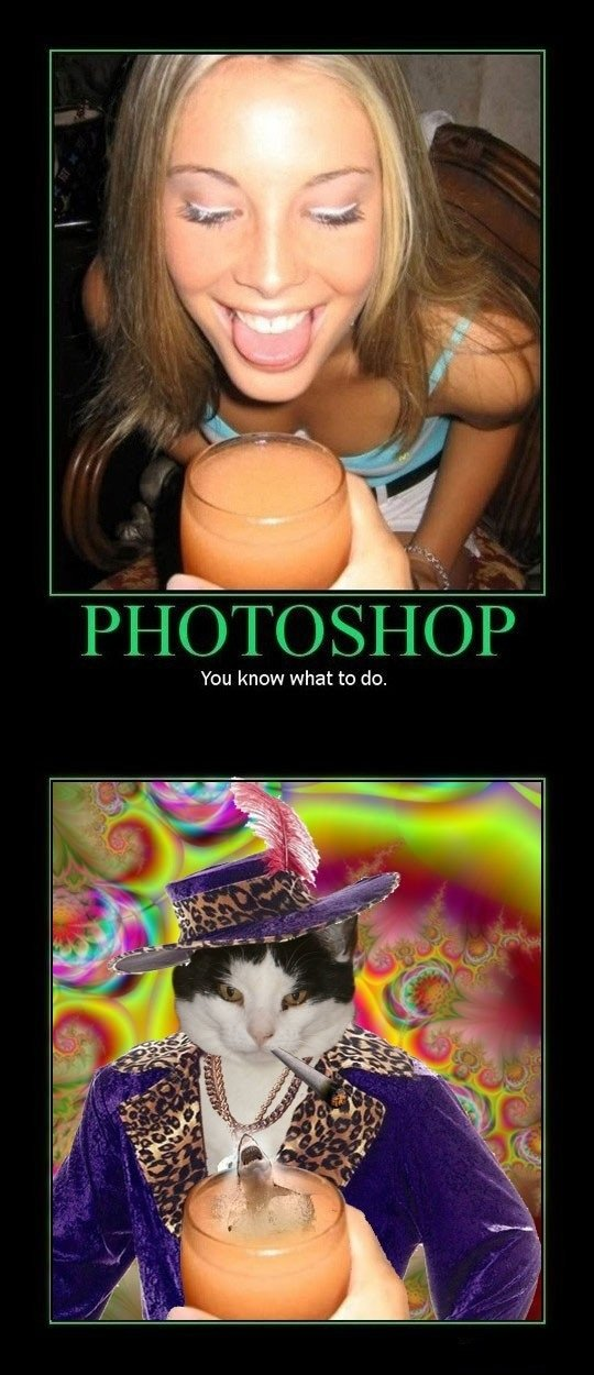 Miracles of Photoshop. Dont look at tags!. PHOTOSHOP You know what to do.. put a in it!