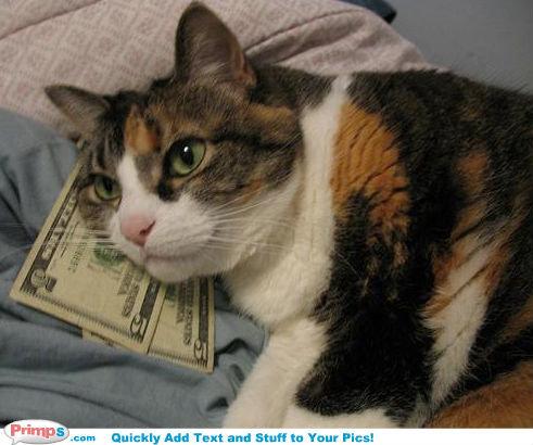 MONEY. pussys love mone.. I will