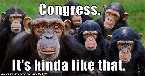 Monkeys!. Really old monkeys....