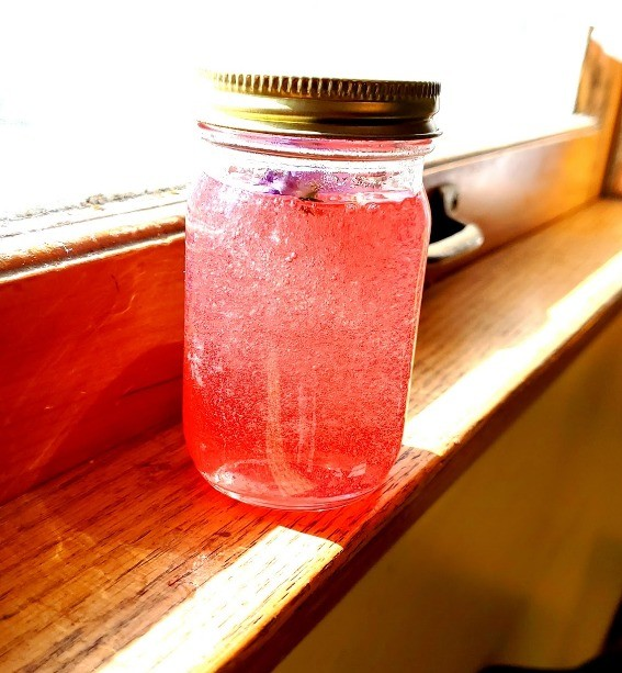 My first time making wild violet jelly. .. Next time make wild violent jelly