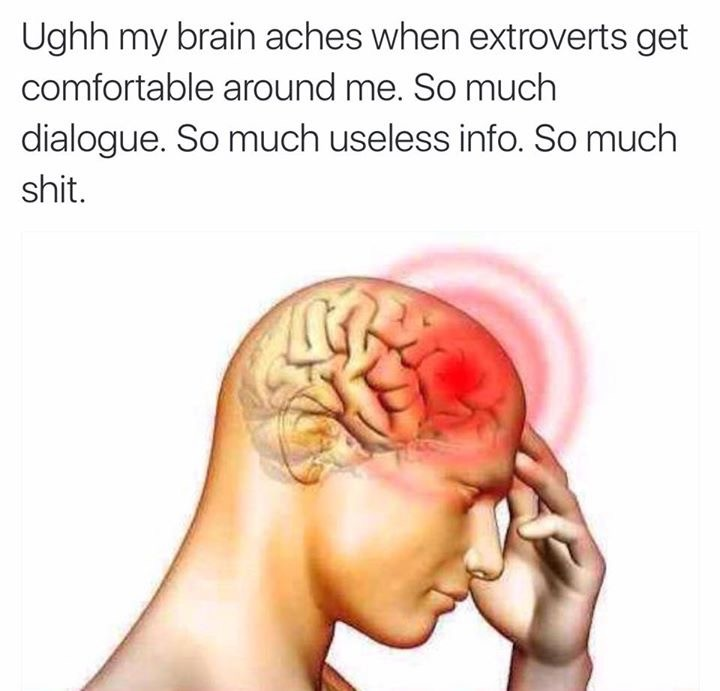 """Need a spam filter. . Ughh my brain aches when extroverts get comfortable around me. So much dialogue. So much useless info. So much shit.. """"Man i'm just so much smarter and better then these people, god i love low key feeding into my superiority complex, that's healthy"""""""