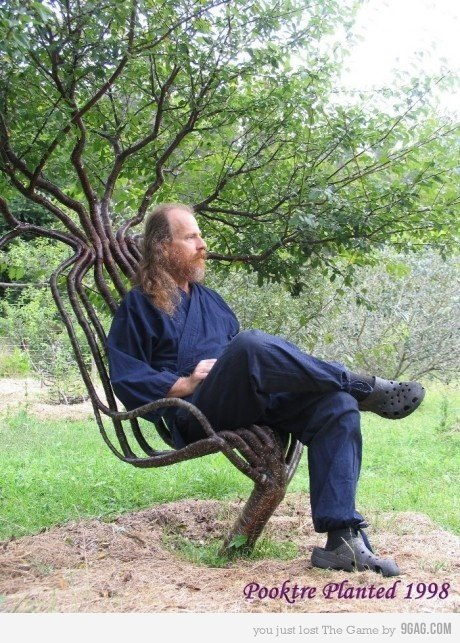 NEED ONE. cool chair made of tree.