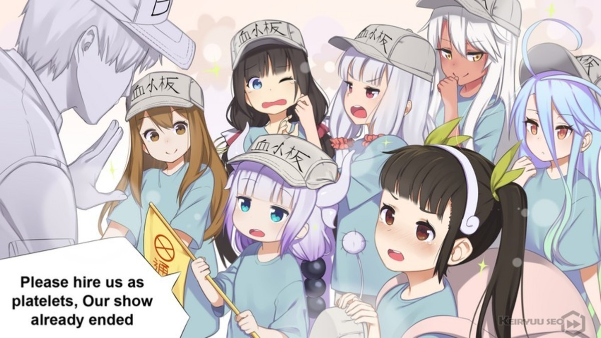 New cells looking for work. .. Dragon Maid No Game No Life ... I must be starting to get a life, 'cause that's all I recognized.