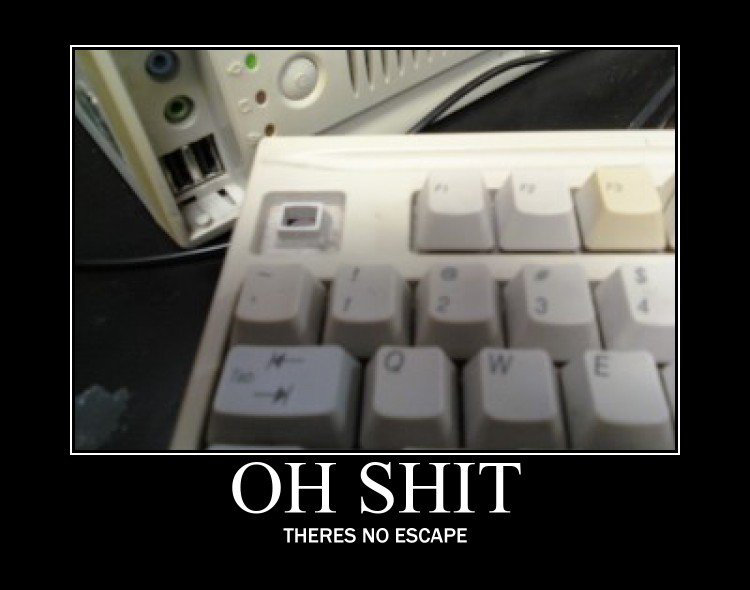 No Escape!. Epicly Long Gasp. THERES NO ESCAPE. facepalm i posted this weeks ago and got only like 5 thumbs and this steals my pic and makes front page? its like xaviersstuff part 2. go to my profile if you d