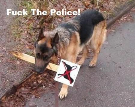 No Dogs. No description!. Fuerte' ttu r HI ajg