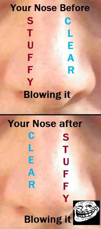 Nose Logic. You know exactly what I'm talking about... titt itp. as i sit here with a cold, with constant sneezing, and nose bleeds. I am doing well today