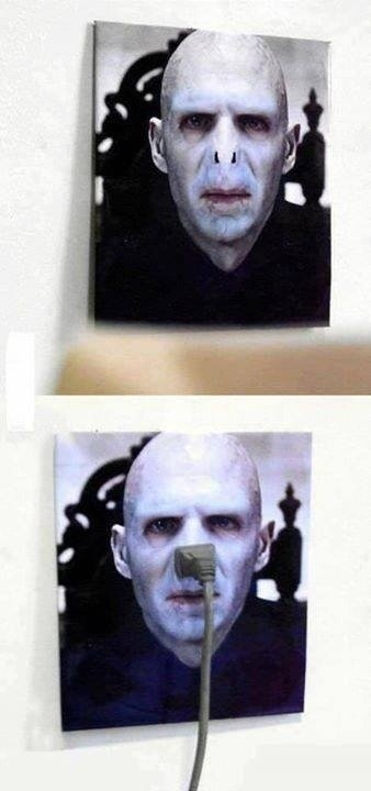 Nose Plug. So that's how Hogwarts gets its power. And Why Voldemort is so vengeful..