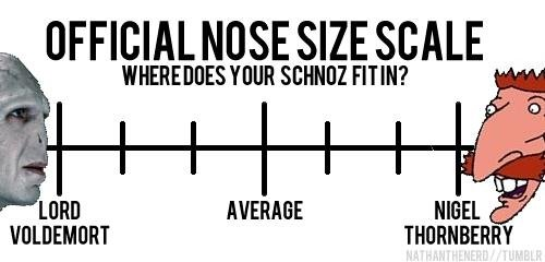 Nose scale. Not sure if repost (sorry if it is but I've never seen this on fj). TIME FOI? OFFICIAL NOSE SIZE SCALE. Blargh, blargh