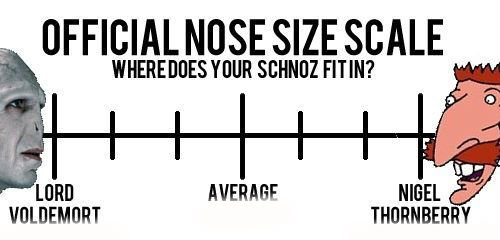 nose scale. . TIME FINN? OFFICIAL NOSE SIZE SCALE